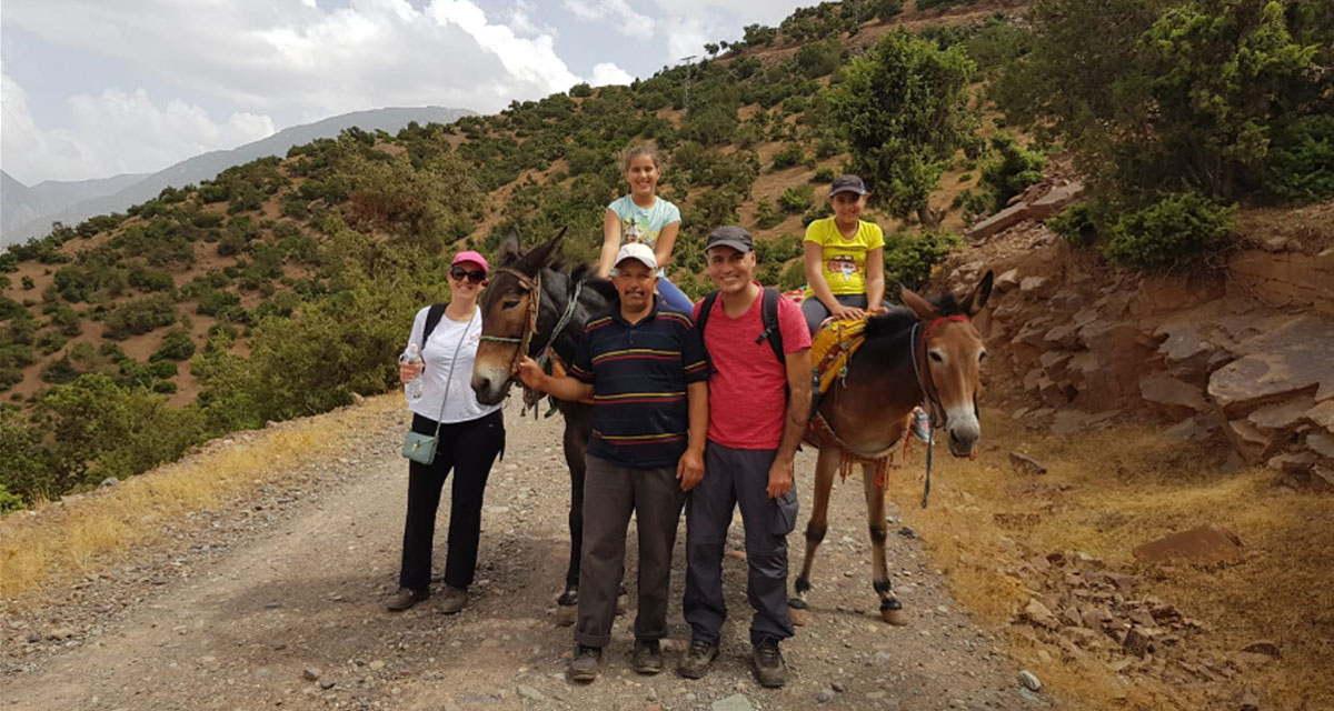 Walking-Ouirgane-Day-Trip-with-Mules